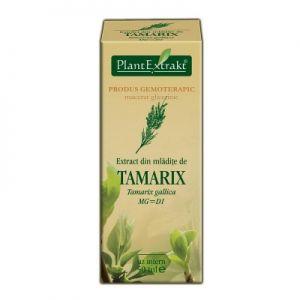 EXTRACT DIN MLADITE DE CATINA ROSIE MG=D1, 50 ml, Plant Extrakt