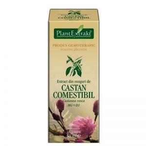 EXTRACT DE MUGURI DE CASTAN COMESTIBIL MG=D1, 50 ml, Plant Extrakt