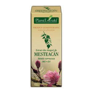 EXTRACT DIN MUGURI DE MESTEACAN MG=D1, 50 ml, Plant Extrakt