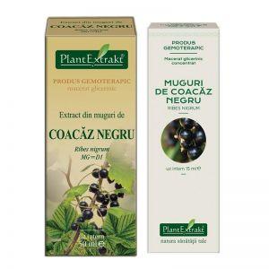 EXTRACT DIN MUGURI DE COACAZ NEGRU MG/MG=D1, 15/50 ml, Plant Extrakt