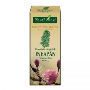 EXTRACT DIN MUGURI DE JNEAPAN MG=D1, 50 ml, Plant Extrakt