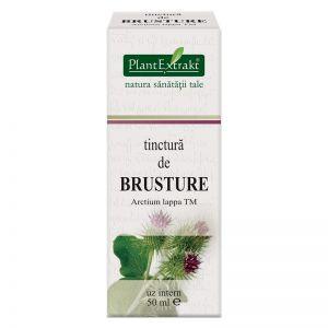BRUSTURE - Arctium Lappa, Tinctura 50 ml, Plant Extrakt