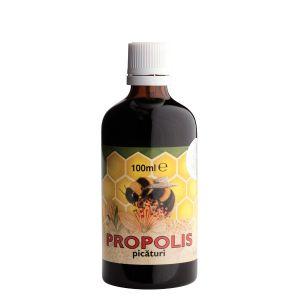 PROPOLIS, Tinctura 100 ml, Parapharm