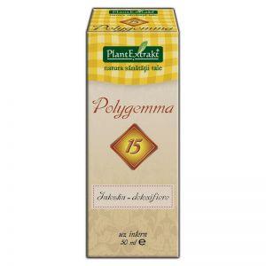 POLYGEMMA 15 - INTESTIN DETOXIFIERE 50 ml, Plant Extrakt