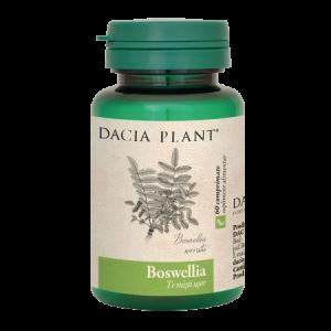 BOSWELLIA 60 comprimate, Dacia Plant
