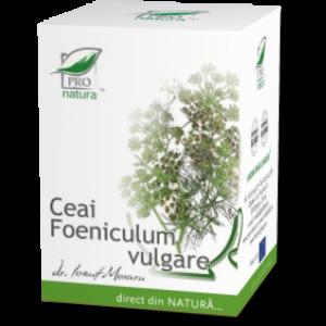 FENICUL (FOENICULUM VULGARE) Ceai 20 doze, Laboratoarele Medica
