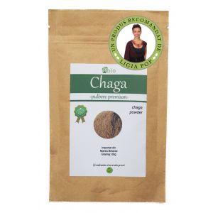 CHAGA PULBERE, 60 g, Obio