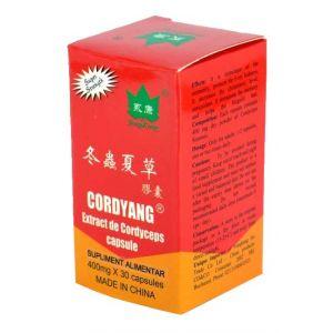 CORDYANG (CORDYCEPS) 400 mg, 30 capsule, Yong Kang