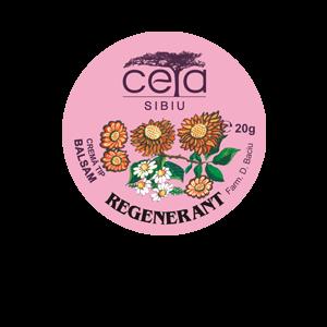 UNGUENT REGENERANT 20/40 g, Ceta Sibiu
