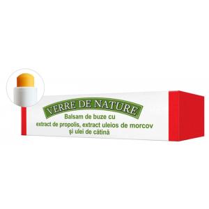 BALSAM DE BUZE CU EXTRACT DE PROPOLIS - VERRE DE NATURE 4.8 g, Manicos