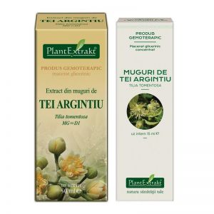 EXTRACT DE MUGURI DIN TEI ARGINTIU MG/MG=D1, 15/50 ml, Plant Extrakt
