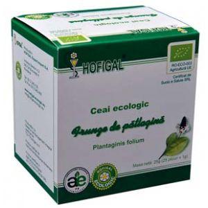 PATLAGINA - CEAI ECOLOGIC, 25 plicuri x 1 g, Hofigal