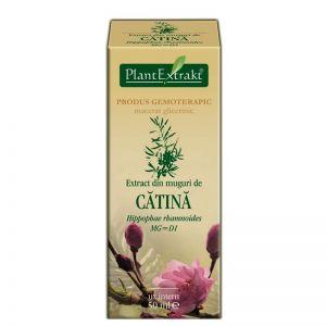 EXTRACT DIN MUGURI DE CATINA ALBA MG=D1, 50 ml, Plant Extrakt