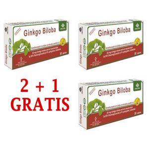 GINKGO BILOBA 40 mg, 30 comprimate, 2+1 GRATIS, Ac Helcor