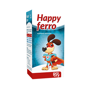 HAPPY FERRO SIROP 100 ml, Fiterman Pharma