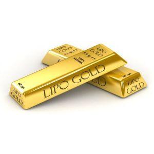 LIPO GOLD 42  capsule, Plant Expert