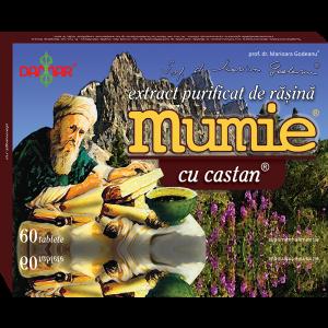 EXTRACT PURIFICAT DE RASINA MUMIE CU CASTAN 30/60 tablete, Damar