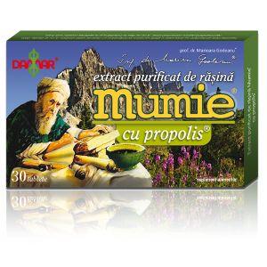 EXTRACT PURIFICAT DE RASINA MUMIE CU PROPOLIS 30/60 tablete, Damar