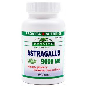 ASTRAGALUS 9000 mg, 60 capsule, Provita Nutrition