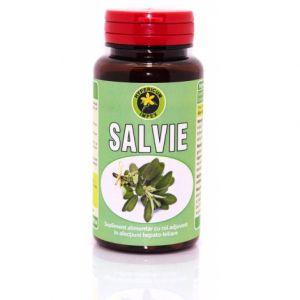 SALVIE 60 capsule, Hypericum Impex