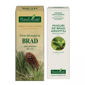 EXTRACT DIN MUGURI DE BRAD MG/MG=D1, 15/50 ml, Plant Extrakt