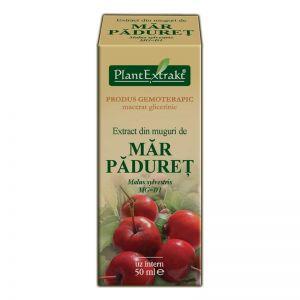 EXTRACT DIN MUGURI DE MAR PADURET MG=D1, 50 ml, Plant Extrakt