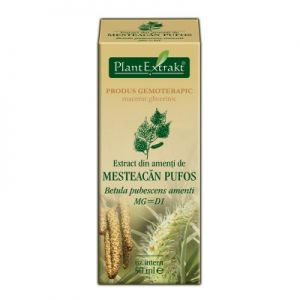 EXTRACT DIN AMENTI DE MESTEACAN PUFOS MG=D1, 50 ml, Plant Extrakt