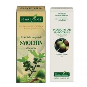 EXTRACT DIN MUGURI DE SMOCHIN MG/MG=D1, 15/50 ml, Plant Extrakt