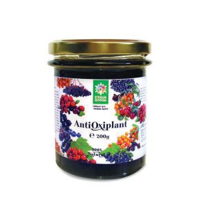 ANTIOXIPLANT IN MIERE, 200 g, Santo Raphael