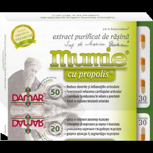 EXTRACT PURIFICAT DE RASINA MUMIE CU PROPOLIS 30/60 capsule, Damar