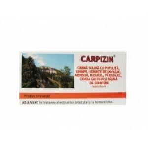 CREMA SOLIDA (SUPOZITOARE) CU GHIMPE SI PUFULITA - CARPIZIN, 10 buc x 1.5 g, Laur Med