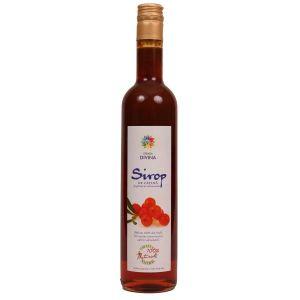 SIROP CATINA STICLA, 500 ml, Santo Raphael