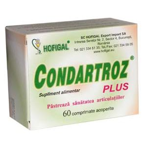 CONDARTROZ PLUS 60 comprimate, Hofigal