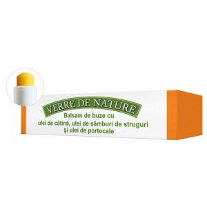 BALSAM DE BUZE CU ULEI DE CATINA - VERRE DE NATURE 4.8 g, Manicos