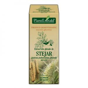 EXTRACT DIN GHINDE DE STEJAR MG=D1, 50 ml, Plant Extrakt