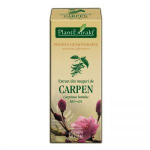 EXTRACT DE MUGURI DE CARPEN MG=D1, 50 ml, Plant Extrakt