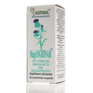 MAG-ANGHINAR 40 comprimate, Hofigal