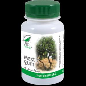 MASTIC GUM, 60 capsule, Laboratoarele Medica