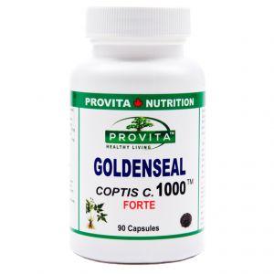 GOLDENSEAL COPTIS C. FORTE 1000 mg, 90 capsule, Provita Nutrition