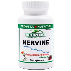 NERVINE 60 capsule, Provita Nutrition
