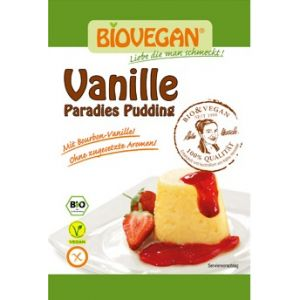 BUDINCA DE VANILIE PUDRA BIO 31 g, Biovegan
