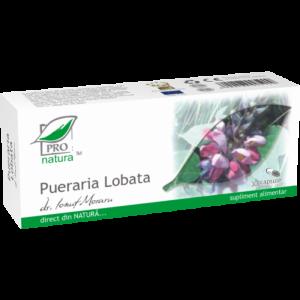 PUERARIA LOBATA, 30/ 60/150 capsule, Laboratoarele Medica