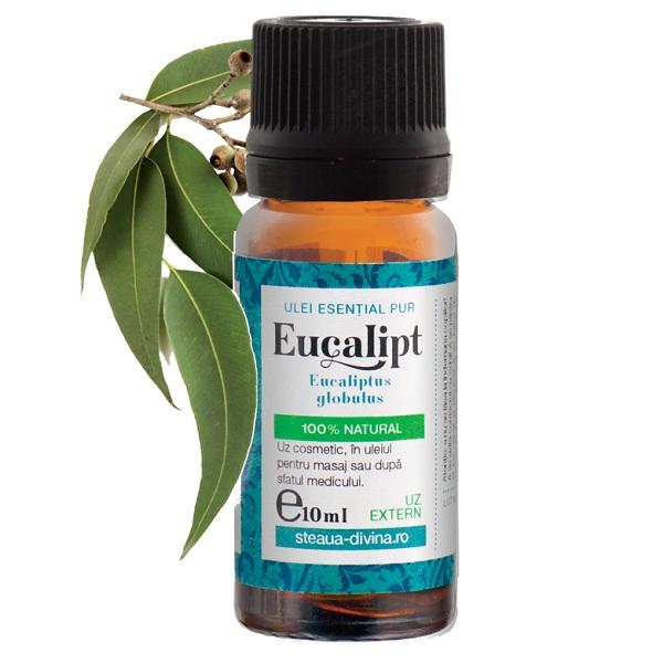 EUCALIPT, Ulei esential 10 ml, Santo Raphael